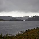 Lake Pedder  by Odille Esmonde-Morgan