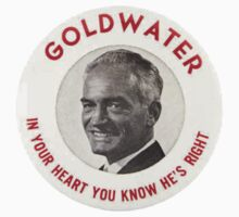 Barry Goldwater by WaldenWalters