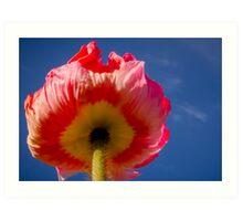 Poppie in the Sky Art Print