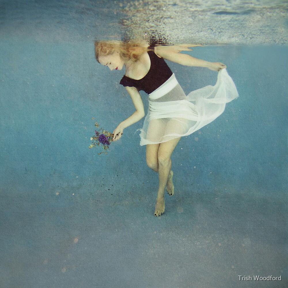 'Lyrical Dreams' by Trish Woodford