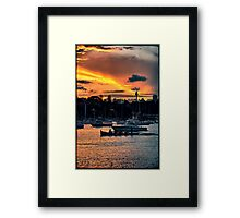 Rose Bay marina Framed Print