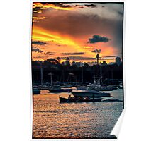Rose Bay marina Poster