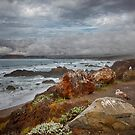 California Coast by George Cathcart