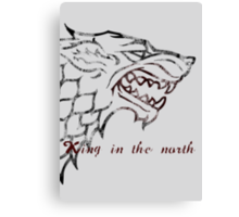 House Stark: King in the north Canvas Print