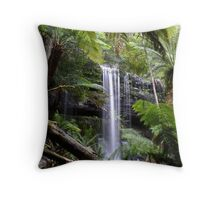 framing the falls Throw Pillow