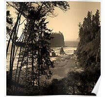 ruby beach, wa, usa old school (square) Poster