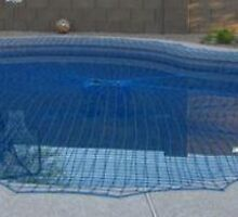 Pool Net Covers by kingspoolfencin