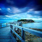Bare Island  by Arfan Habib