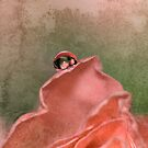 Rose mountain by Christine Dyrnes