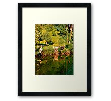 Green life, a river and reflections | waterscape photography Framed Print