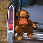 ccc30 - Monkey by Neil Bushby