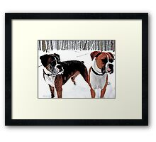 Boxers in the Snow Framed Print