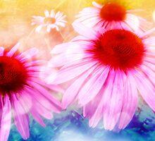 Rainbow Colored Coneflowers by SRowe Art