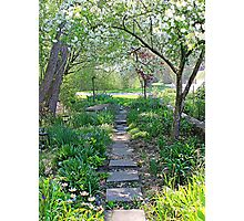 Sunny Garden Path Photographic Print