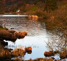 Rydal Water II by Jeanie