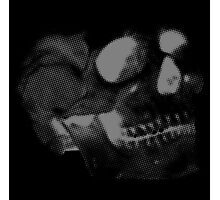 Skull grey on black Photographic Print