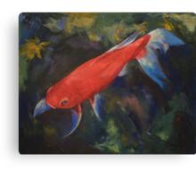 Haiku Koi Fish Canvas Print