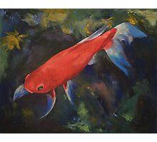 Haiku Koi Fish Photographic Print