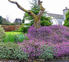 A Spring Garden by Fara