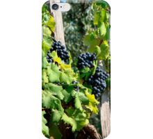 Before the Bottle iPhone Case/Skin