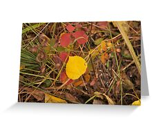 The Aspen Leaf Greeting Card