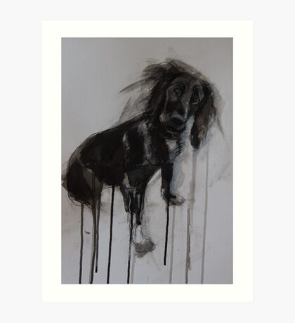 Cocker Spaniel, Black Ink and Conte Drawing Art Print