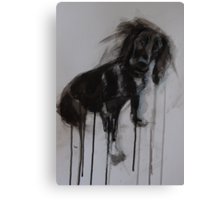 Cocker Spaniel, Black Ink and Conte Drawing Canvas Print