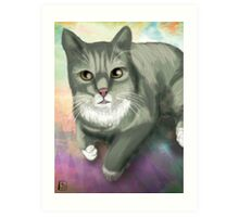 Potter the Cat Art Print