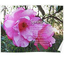 Spring Is Poster