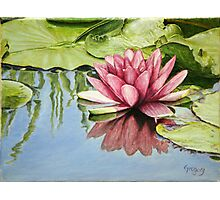 Lotus in the Water Photographic Print