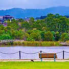 LILYDALE Lake Panorama Vic Australia by PhotoJoJo