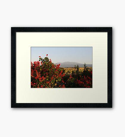 Ngorogoro Gardens Framed Print