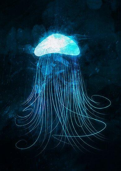 Jellyfish by randoms