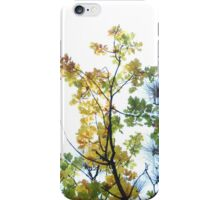 oak branches iPhone Case/Skin