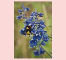 Bumble Bee On Larkspur Kids Clothes