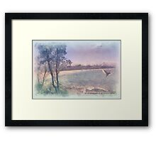 Flying Ibis Framed Print