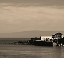 The Old Lifeboat House & Harbour at Coverack in Cornwall by Mike Honour