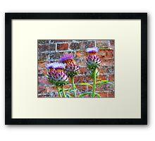 Purple Thistles Framed Print