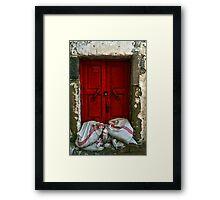closed red door Framed Print