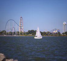 Cedar Point by Susan Kaufman