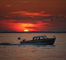 Lyman cruise at sunset by Susan Kaufman