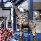 The Keswick Giraffe by Tom Gomez