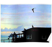 Finch Bay, Santa Cruz, Galapagos Islands Poster
