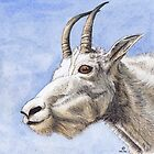 Mountain Goat by shiro