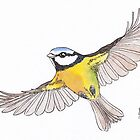 Flying Blue-tit by shiro
