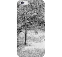 Peering Out - Deer BW iPhone Case/Skin