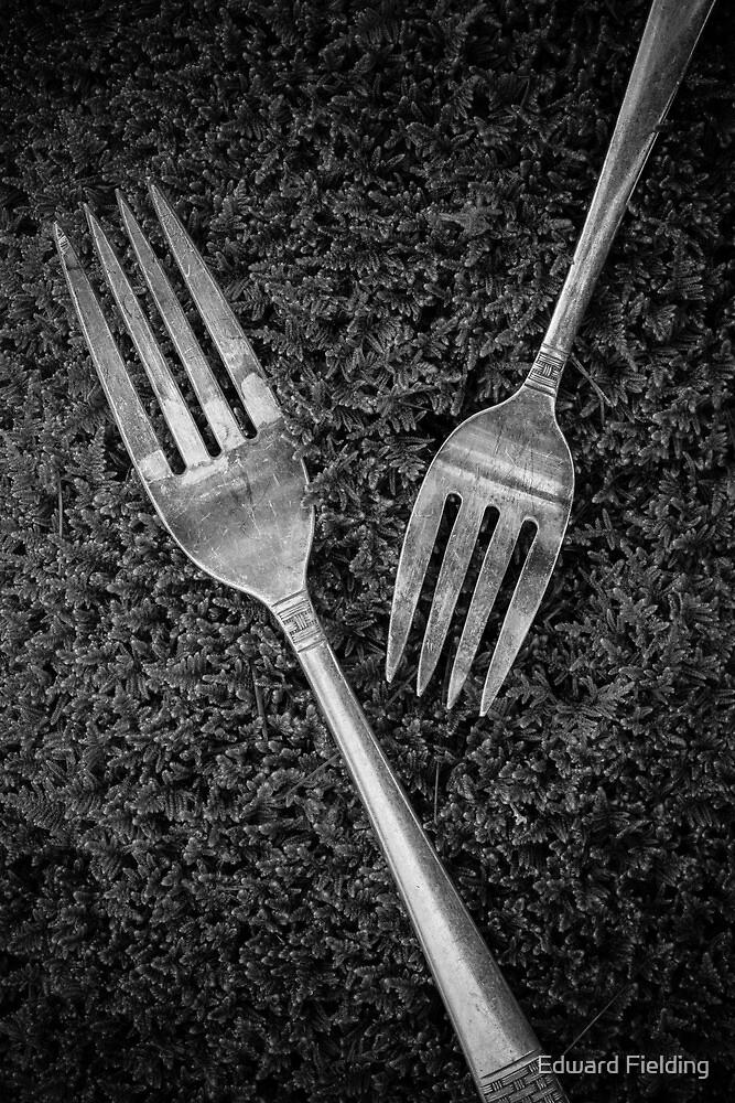 Fork Still Life by Edward Fielding