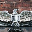 The Presidential Eagle by Cora Wandel