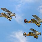 Three Hawker fighter biplanes by Colin Smedley