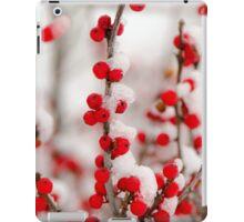 Red Berries in Winter iPad Case/Skin